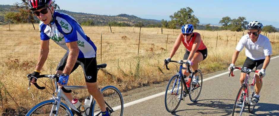 """""""Bike Ride""""的图片搜索结果"""